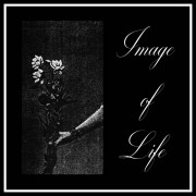 Image Of Life – Attended By Silence