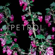 Crystalline Stricture - Petrol